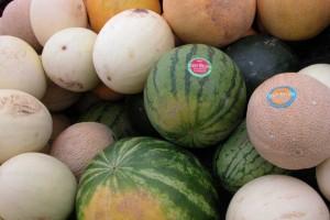 dixon_melons